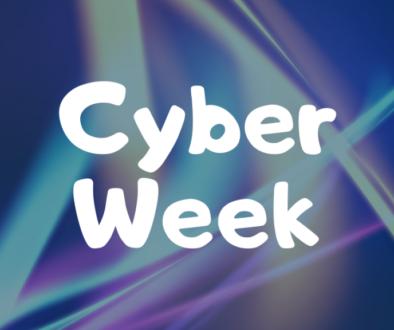 12.4 Brianna - Cyber Week